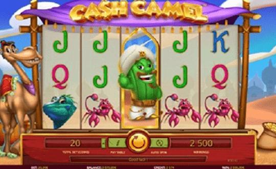 Cash Camel tragamonedas